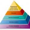 Maszlow piramisa másként